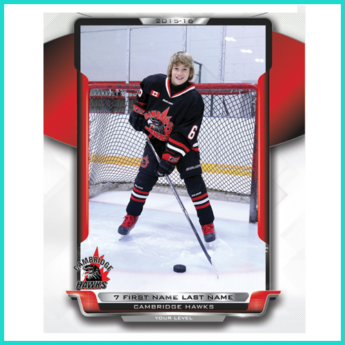 Hockey 8x10 Player