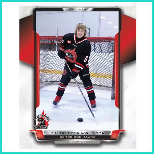 Hockey 8x10 Player