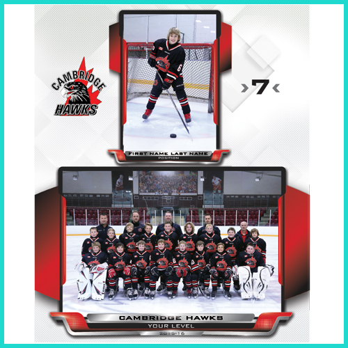 Hockey 8x10 Composite