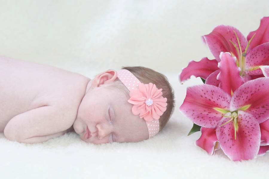 newborn photographer kitchener waterloo